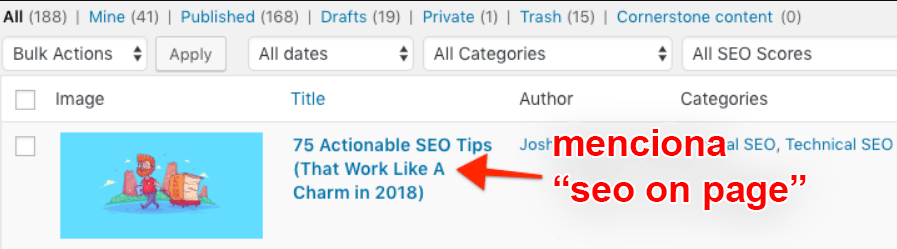 on page seo internal links wp search