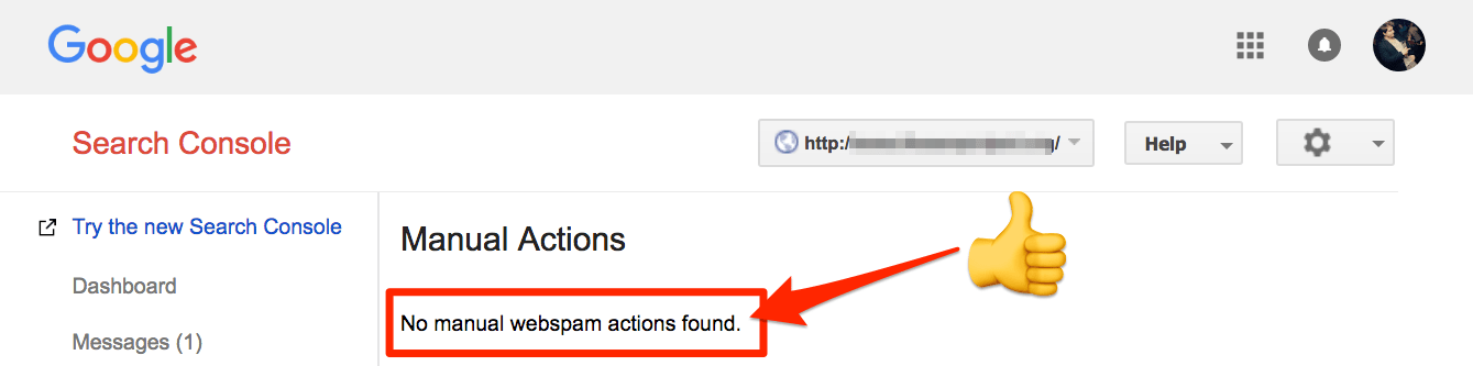 search console no manual actions