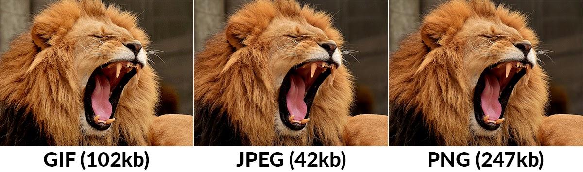 gif vs jpeg vs png