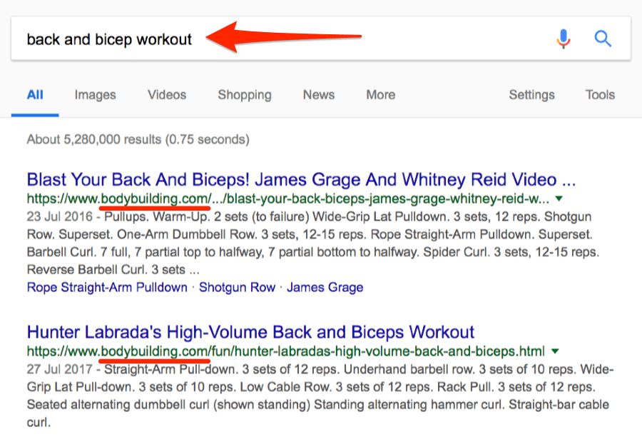 back and bicep workout google search