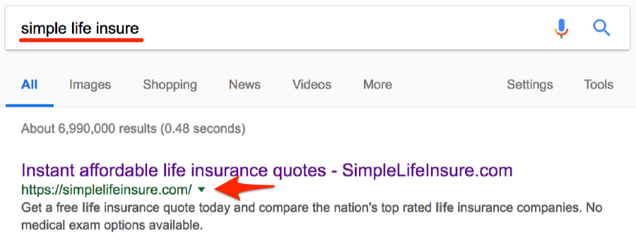 simple life insure google search