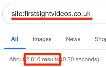 google index check 1
