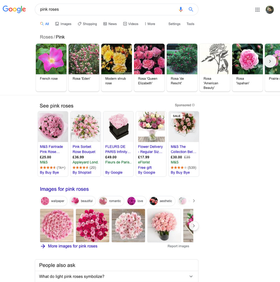 pink roses results
