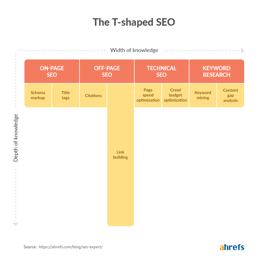 t shaped seo expert image