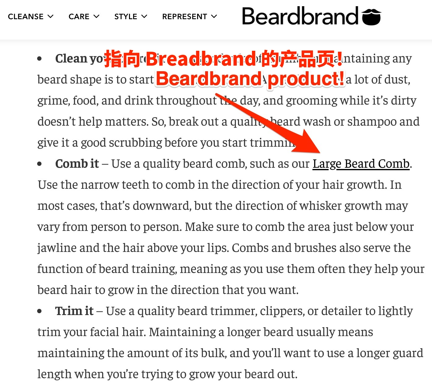 beardbrand blog post cn