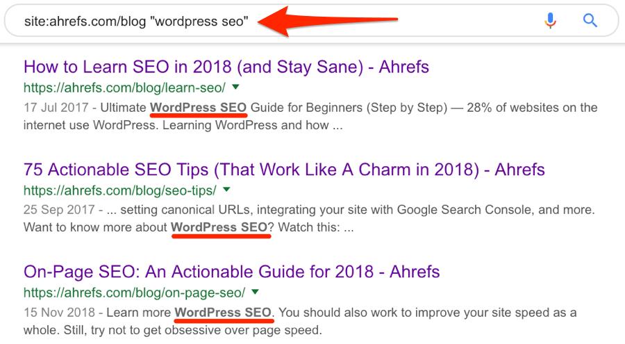 wordpress seo mentions