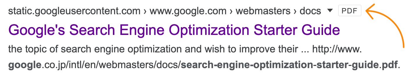 1 google search pdf