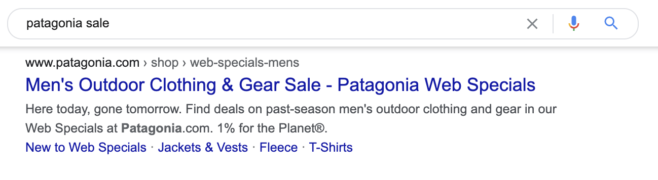 21 patagonia meta description