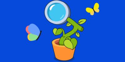什么是自然搜索? 你需要知道的一切